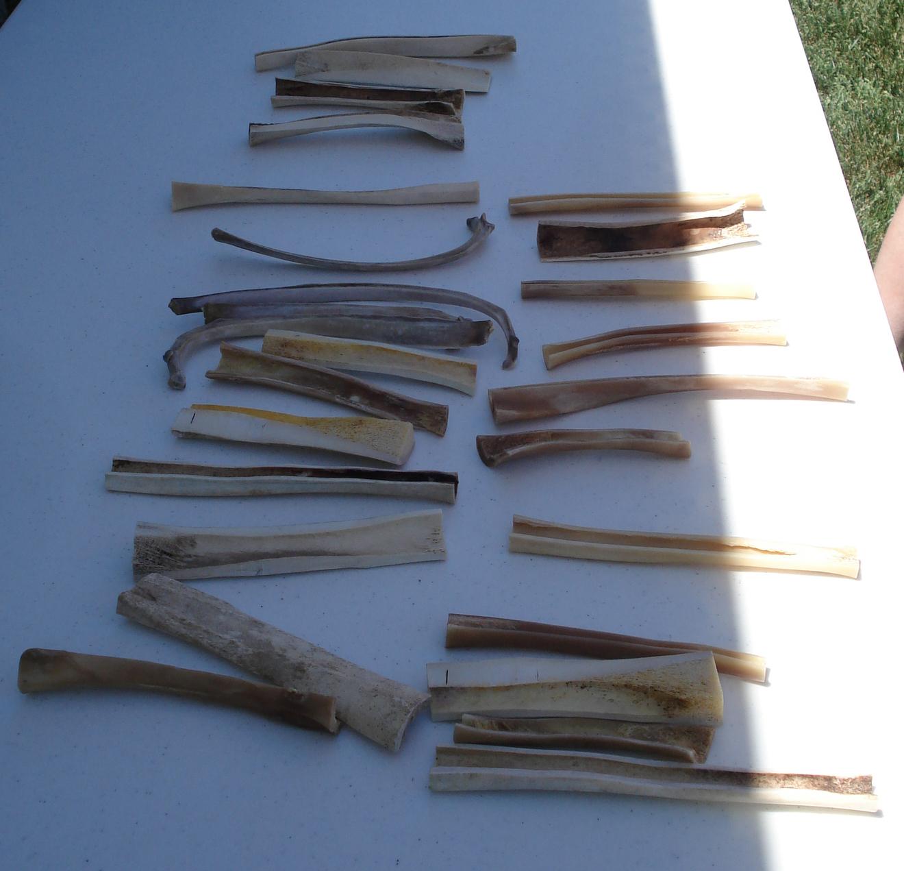Bone Tool Workshop Parks Library Preservation